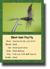 Fly Pattern Trading Cards - Set #2