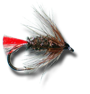 Brown Hackle Peacock Wet Fly